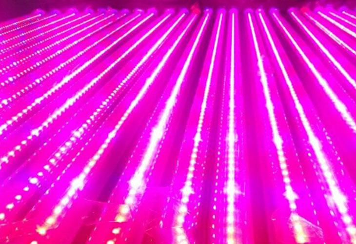 Светодиодная лампа для роста растений LED Lvyingguangdian Т5-T8 (112-115)